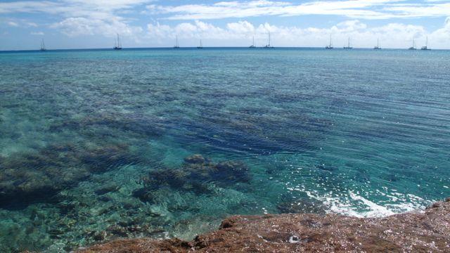 Minerva Reef